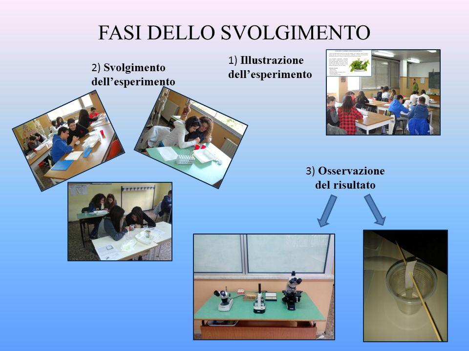 FASI DELLO SVOLGIMENTO 1) Illustrazione dell'esperimento 2) Svolgimento dell'esperimento 3) Osservazione del risultato