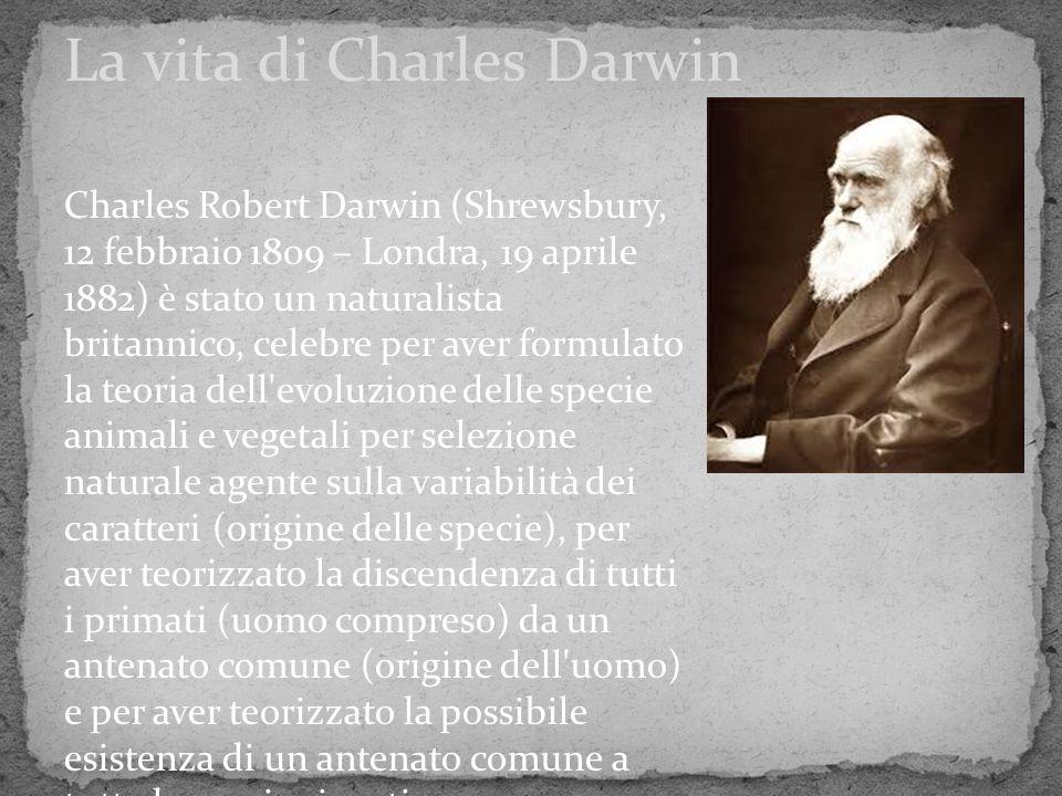 Charles Robert Darwin (Shrewsbury, 12 febbraio 1809 – Londra, 19 aprile 1882) è stato un naturalista britannico, celebre per aver formulato la teoria