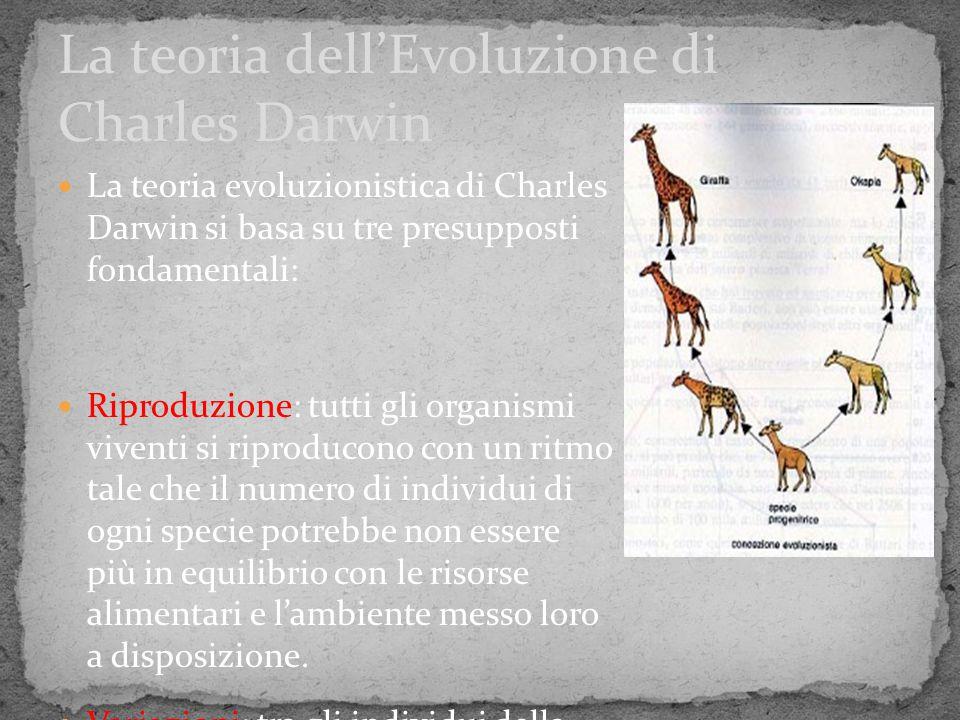 La teoria evoluzionistica di Charles Darwin si basa su tre presupposti fondamentali: Riproduzione: tutti gli organismi viventi si riproducono con un r