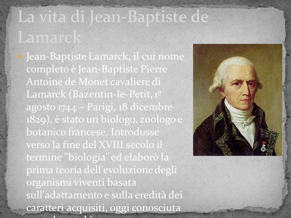 Con la pubblicazione nel 1809 dell opera Philosophie zoologique, Lamarck giunse alla conclusione che gli organismi, così come si presentavano, fossero il risultato di un processo graduale di modificazione che avveniva sotto la pressione delle condizioni ambientali.
