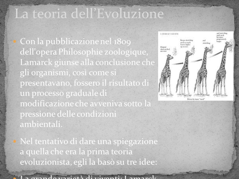 Con la pubblicazione nel 1809 dell'opera Philosophie zoologique, Lamarck giunse alla conclusione che gli organismi, così come si presentavano, fossero