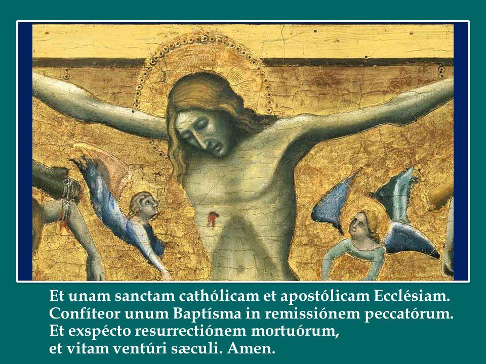 Et unam sanctam cathólicam et apostólicam Ecclésiam.