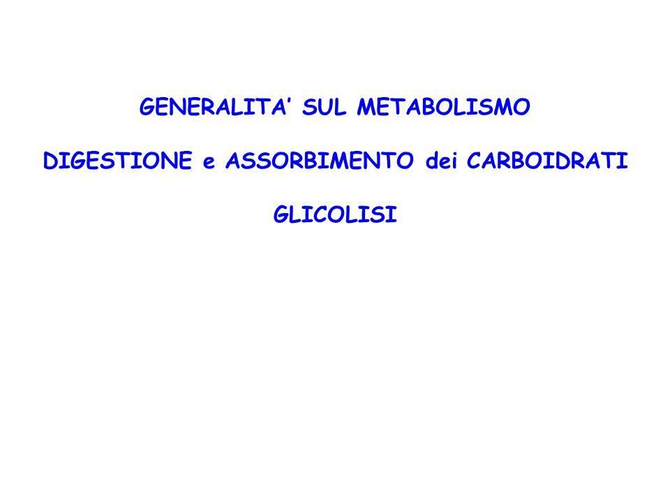 GENERALITA' SUL METABOLISMO DIGESTIONE e ASSORBIMENTO dei CARBOIDRATI GLICOLISI