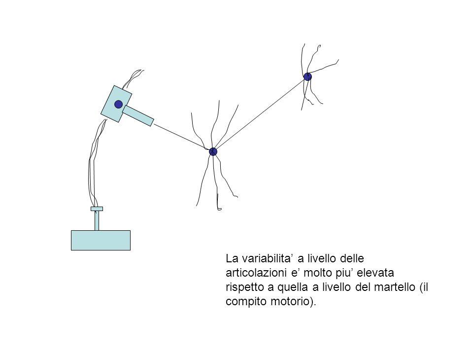 La variabilita' a livello delle articolazioni e' molto piu' elevata rispetto a quella a livello del martello (il compito motorio).