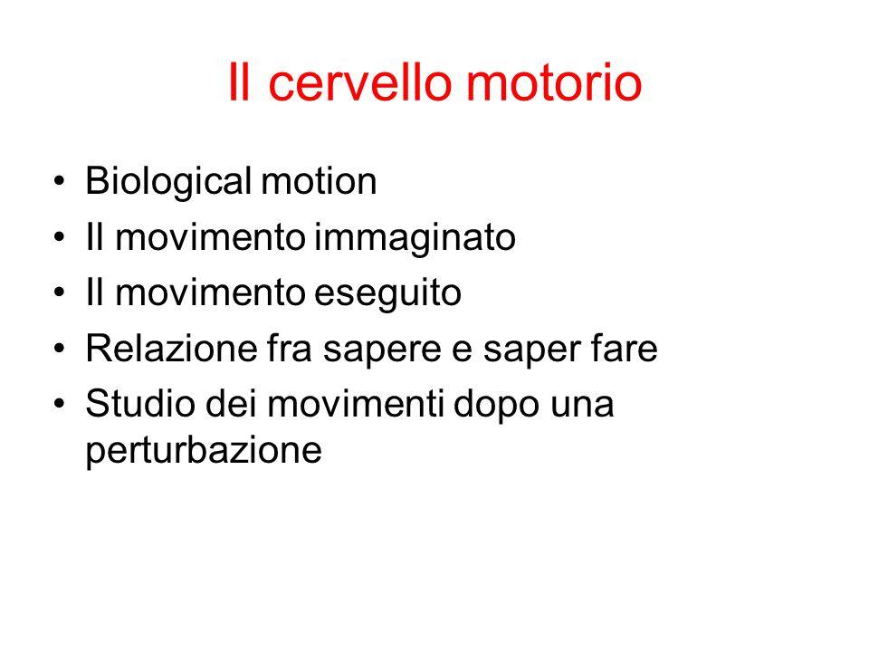 Il cervello motorio Biological motion Il movimento immaginato Il movimento eseguito Relazione fra sapere e saper fare Studio dei movimenti dopo una pe