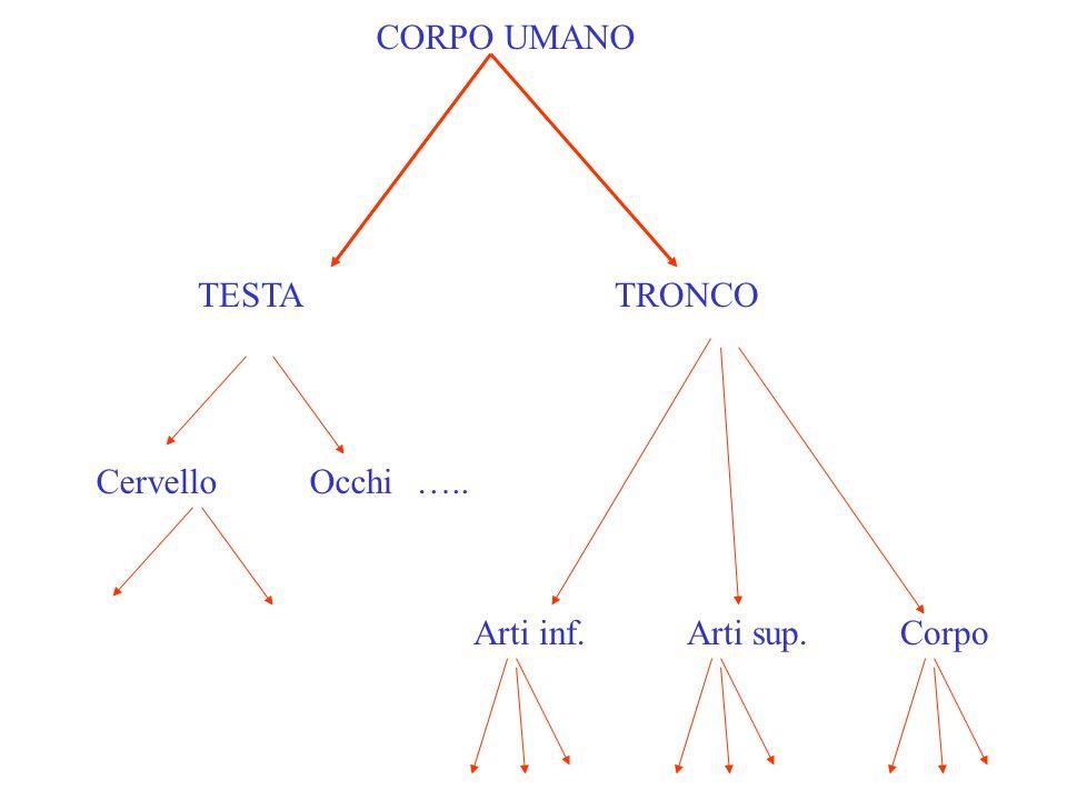 TESTA TRONCO CervelloOcchi ….. Arti inf.Arti sup.Corpo CORPO UMANO