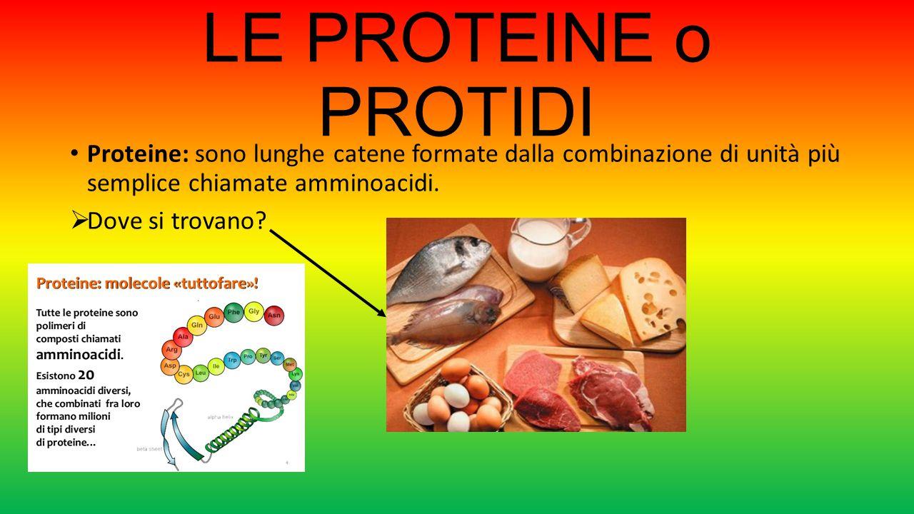 LE PROTEINE o PROTIDI Proteine: sono lunghe catene formate dalla combinazione di unità più semplice chiamate amminoacidi.  Dove si trovano?