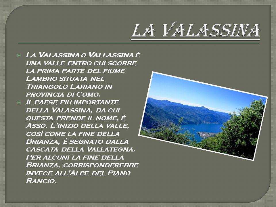  La Valassina o Vallassina è una valle entro cui scorre la prima parte del fiume Lambro situata nel Triangolo Lariano in provincia di Como.  Il paes