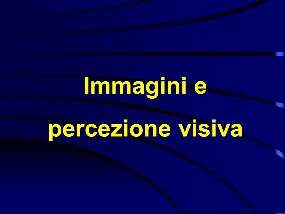 Immagini e percezione visiva