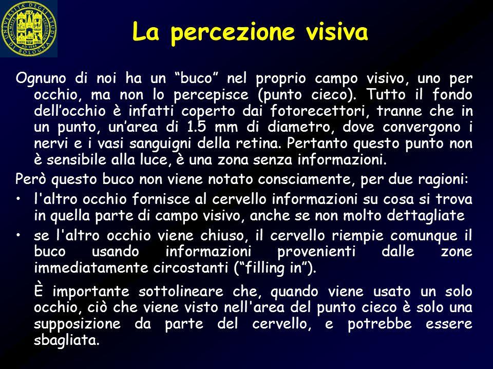 """La percezione visiva Ognuno di noi ha un """"buco"""" nel proprio campo visivo, uno per occhio, ma non lo percepisce (punto cieco). Tutto il fondo dell'occh"""