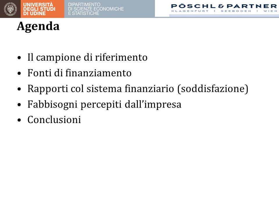 Agenda Il campione di riferimento Fonti di finanziamento Rapporti col sistema finanziario (soddisfazione) Fabbisogni percepiti dall'impresa Conclusioni