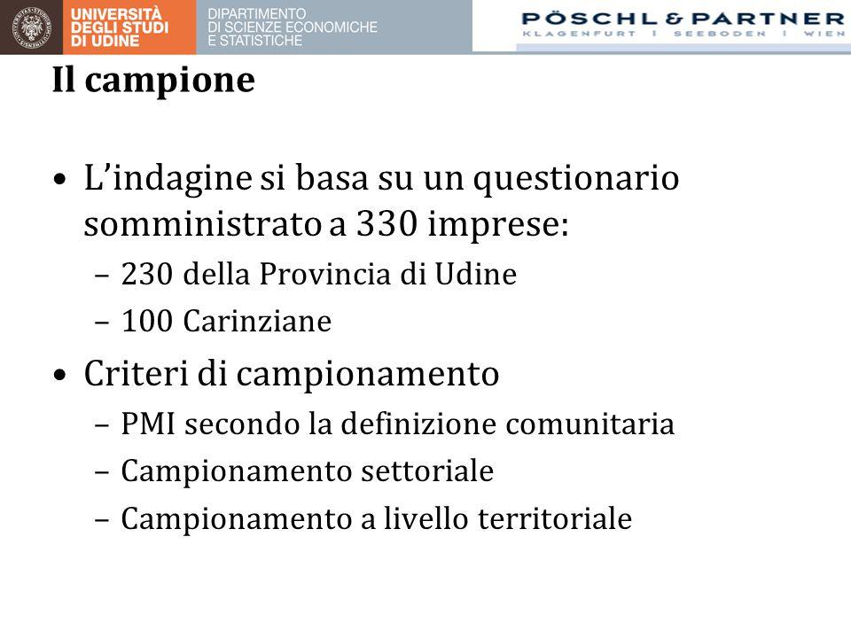 L'indagine si basa su un questionario somministrato a 330 imprese: –230 della Provincia di Udine –100 Carinziane Criteri di campionamento –PMI secondo