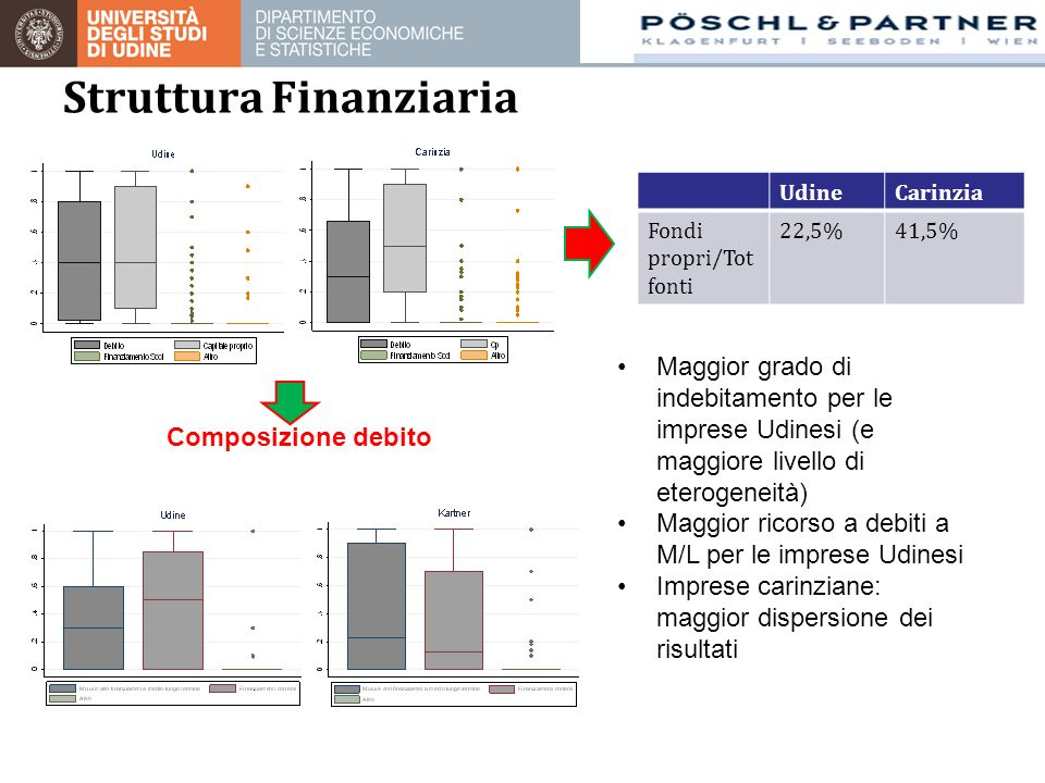 Struttura Finanziaria UdineCarinzia Fondi propri/Tot fonti 22,5%41,5% Composizione debito Maggior grado di indebitamento per le imprese Udinesi (e mag