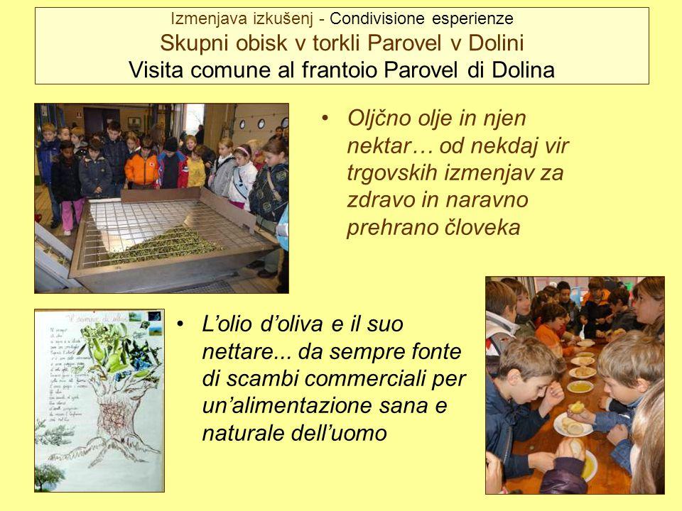 Izmenjava izkušenj - Condivisione esperienze Skupni obisk v torkli Parovel v Dolini Visita comune al frantoio Parovel di Dolina Oljčno olje in njen ne