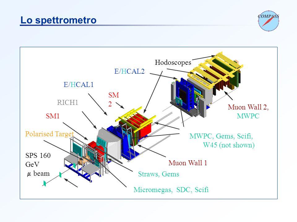 Scifi, Silicon SM1 SM 2 RICH1 Polarised Target E/HCAL1 Muon Wall 1 Muon Wall 2, MWPC SPS 160 GeV  beam Micromegas, SDC, Scifi Straws, Gems MWPC, Gems, Scifi, W45 (not shown) E/HCAL2 Hodoscopes Lo spettrometro