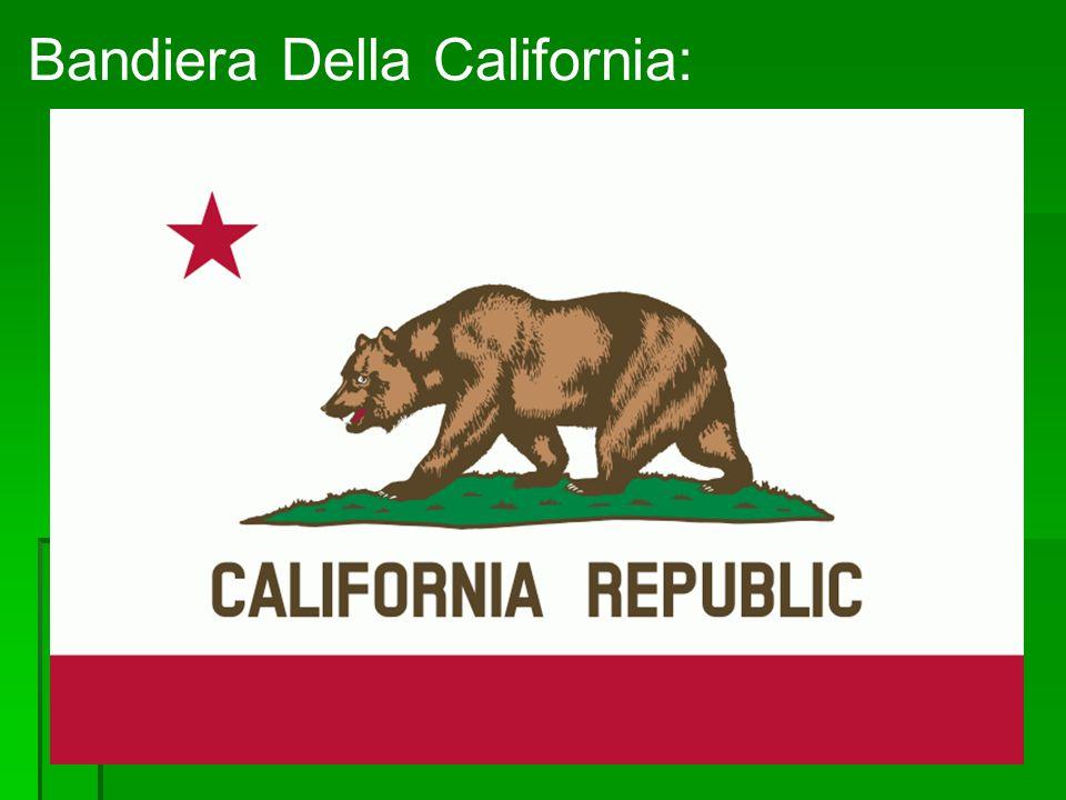 Posizione: Si trova a sud-ovest degli Stati Uniti D America e si affaccia nell Oceano Pacifico, è lo stato più popoloso degli U.S.A.