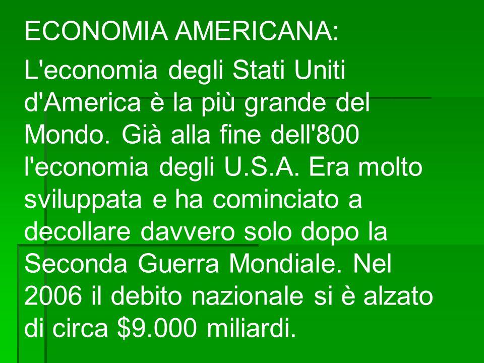 Settore Primario L economia è la più grande del Mondo.