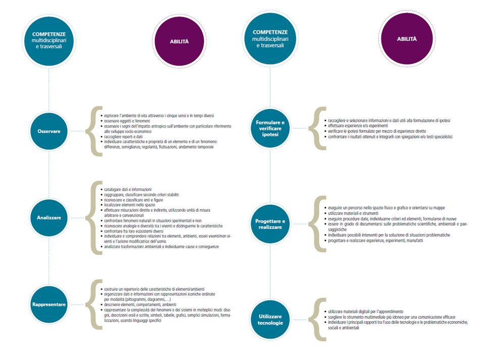 Le competenze trasversali declinate: osservare (esplorare il paesaggio, identificare gli elementi costitutivi nei rispettivi contesti e la loro disposizione all'interno dello spazio, le relazioni, i segni nel paesaggio dall'intervento antropico), analizzare (classificare le informazioni e i dati raccolti, localizzare, effettuare misurazioni, comprendere e interpretare gli aspetti materiali e immateriali, analizzare trasformazioni ambientali), rappresentare (descrivere elementi fisici e antropici, esistenti ed in trasformazione, costruire testi utilizzando differenti linguaggi e forme espressive), formulare e verificare ipotesi (raccogliere e selezionare informazioni e dati utili, effettuare esperienze e/o esperimenti, confrontare ed integrare), progettare e realizzare (orientarsi su mappe, condividere risorse, documenti e memorie del territorio, progettare attività per l'adozione di un monumento).
