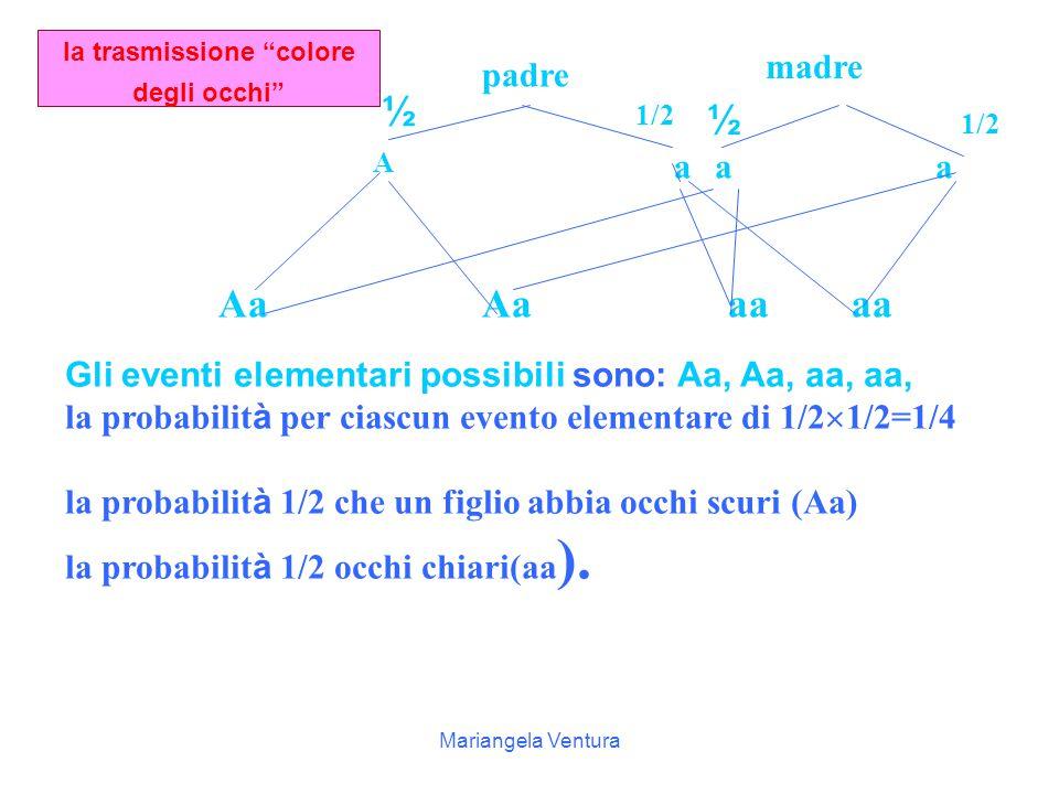 Mariangela Ventura Tabelle a a aA Aa aa a A aA Aa Completa le tabelle e indica i caratteri che possono avere i figli e le relative probabilità a a AA aa AA