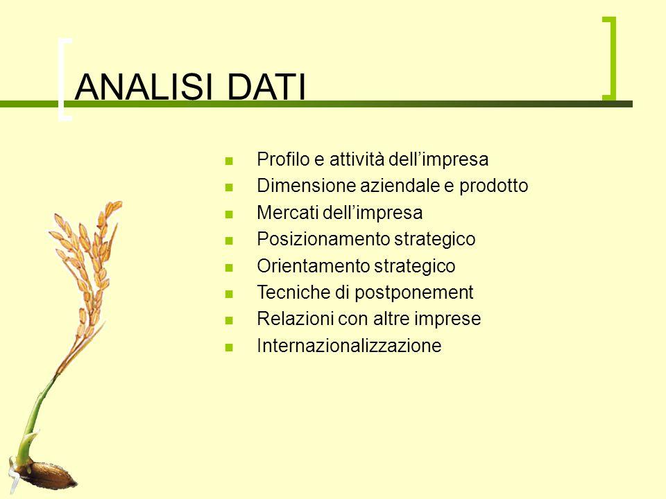 ANALISI DATI Profilo e attività dell'impresa Dimensione aziendale e prodotto Mercati dell'impresa Posizionamento strategico Orientamento strategico Te