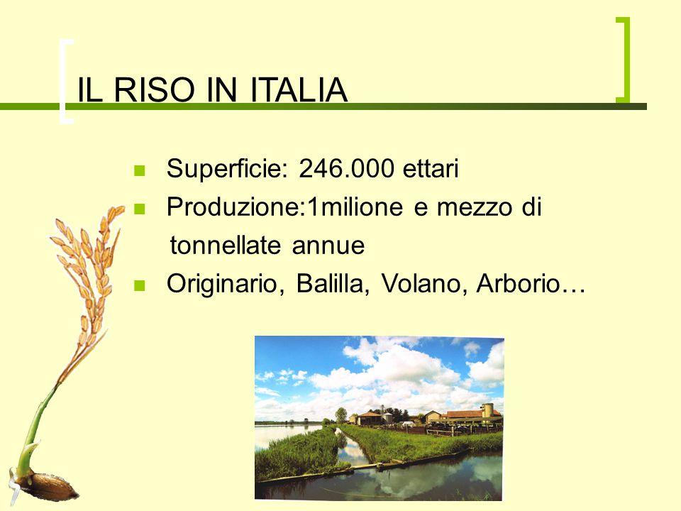 NORMATIVE E ASPETTI ECONOMICI Regolamento speciale per la coltivazione del riso nella provincia di Pavia PSR PAC
