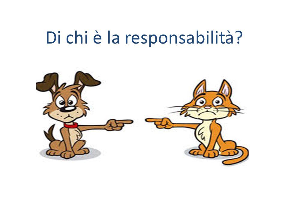 Di chi è la responsabilità