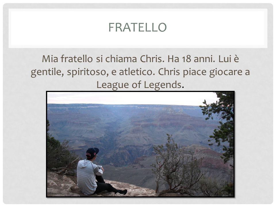 FRATELLO Mia fratello si chiama Chris. Ha 18 anni. Lui è gentile, spiritoso, e atletico. Chris piace giocare a League of Legends.