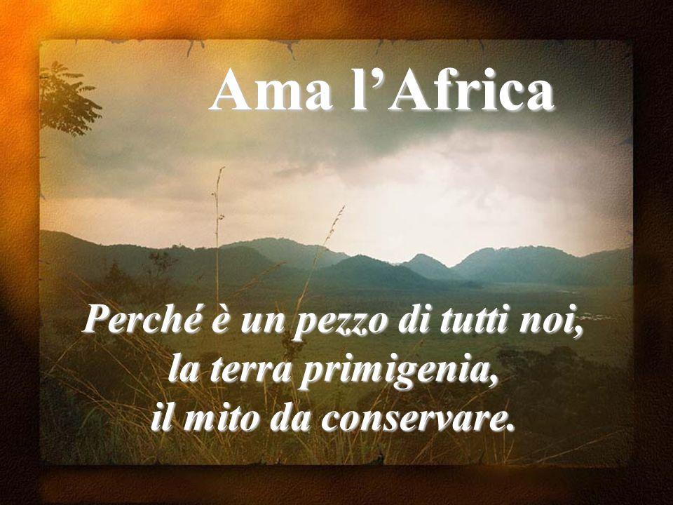 Ama l'Africa Perché è un pezzo di tutti noi, la terra primigenia, il mito da conservare.
