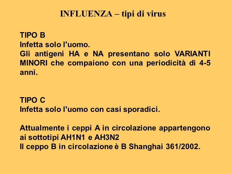 INFLUENZA – tipi di virus TIPO B Infetta solo l'uomo. Gli antigeni HA e NA presentano solo VARIANTI MINORI che compaiono con una periodicità di 4-5 an