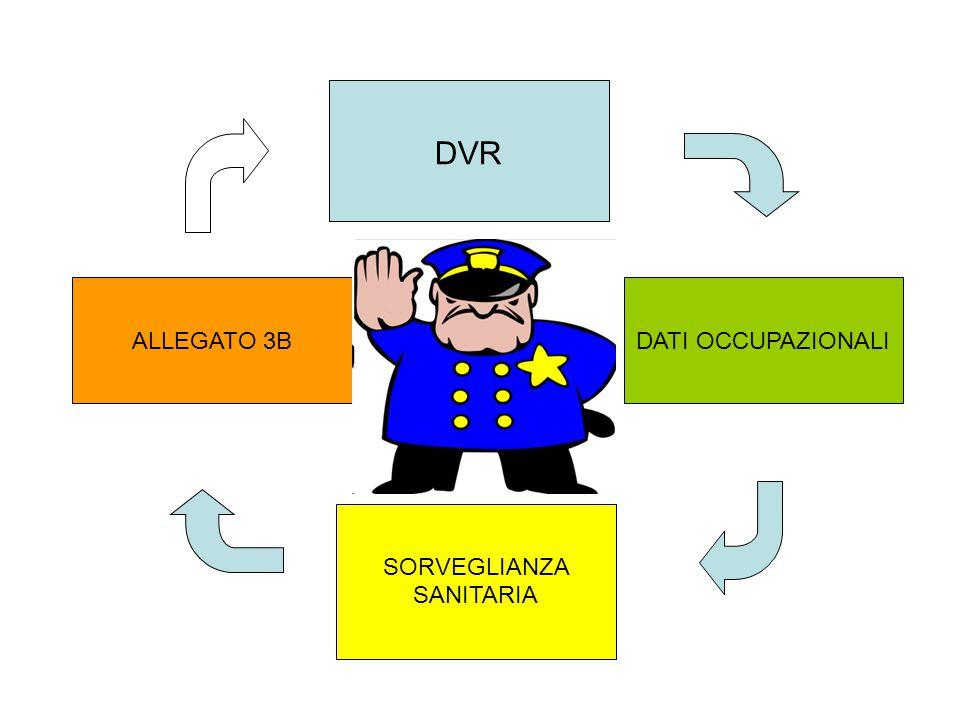 DVR DATI OCCUPAZIONALI SORVEGLIANZA SANITARIA ALLEGATO 3B