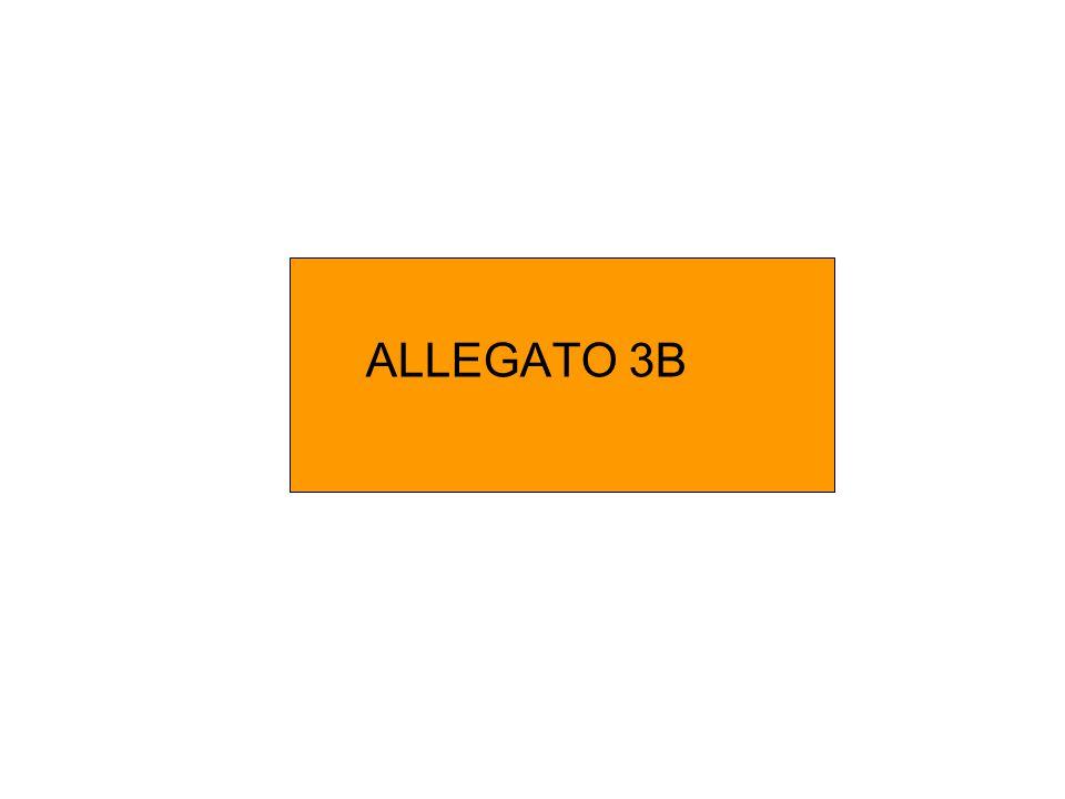 ALLEGATO 3B