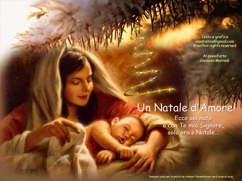 Tu che sei l ' Infinito, Tu il Creatore fa che a Natale ognuno abbia un fiore, Ecco sei nato e con Te mio Signore, solo ora è Natale… Un Natale d ' Amore.