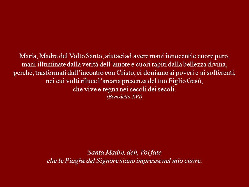 Maria, Madre del Volto Santo, aiutaci ad avere mani innocenti e cuore puro, mani illuminate dalla verità dell'amore e cuori rapiti dalla bellezza divi