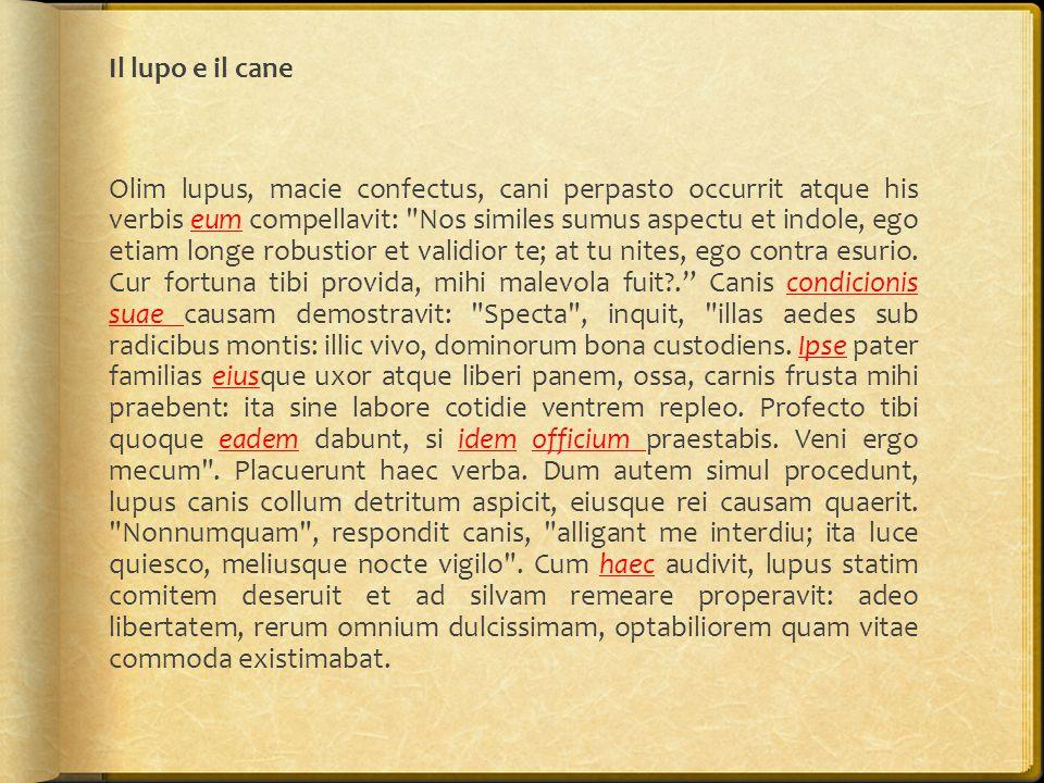 Il lupo e il cane Olim lupus, macie confectus, cani perpasto occurrit atque his verbis eum compellavit: