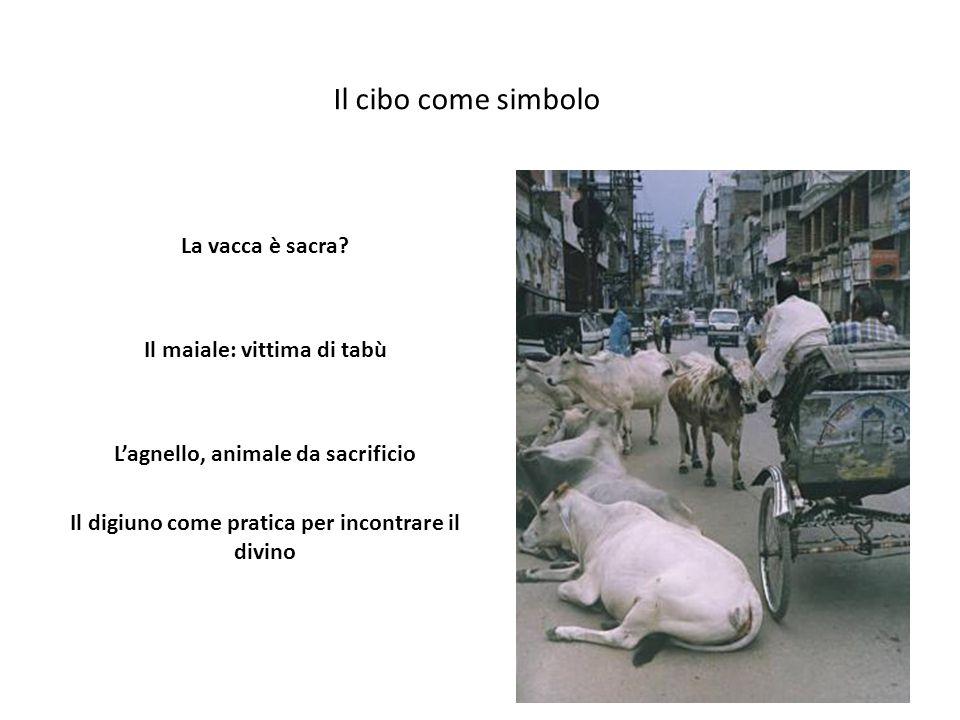 Il cibo come simbolo La vacca è sacra.