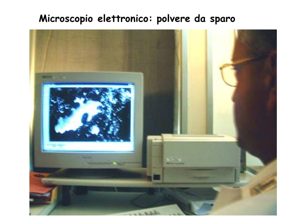 Microscopio elettronico
