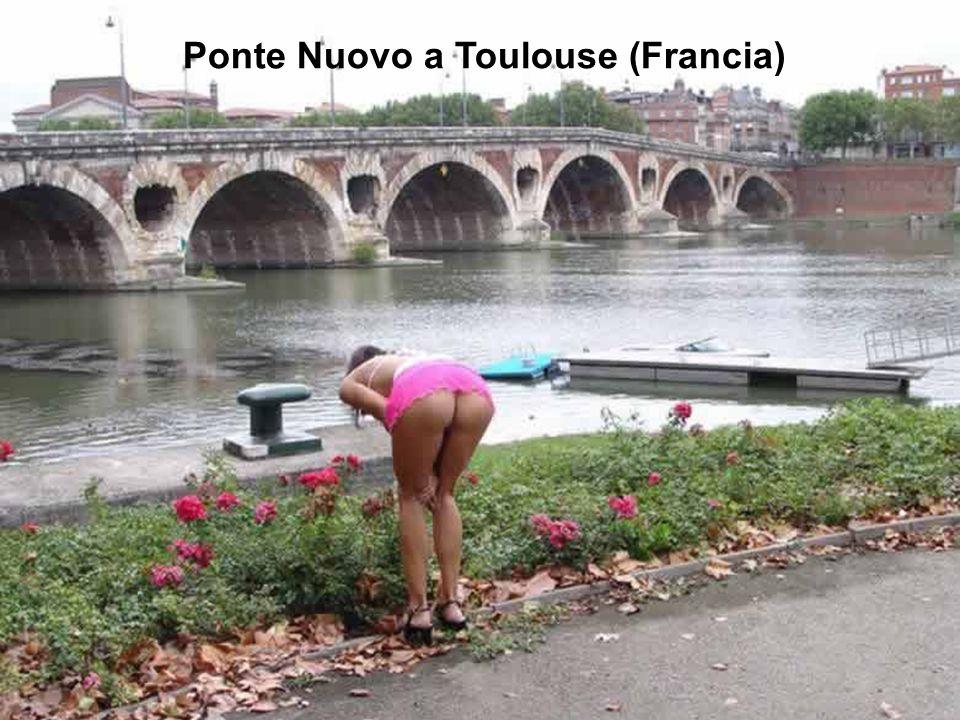 Ponte Nuovo a Toulouse (Francia)