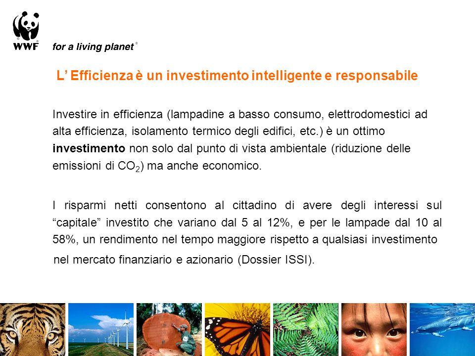 Investire in efficienza (lampadine a basso consumo, elettrodomestici ad alta efficienza, isolamento termico degli edifici, etc.) è un ottimo investimento non solo dal punto di vista ambientale (riduzione delle emissioni di CO 2 ) ma anche economico.