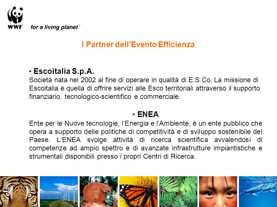 Escoitalia S.p.A. Società nata nel 2002 al fine di operare in qualità di E.S.Co. La missione di Escoitalia è quella di offrire servizi alle Esco terri