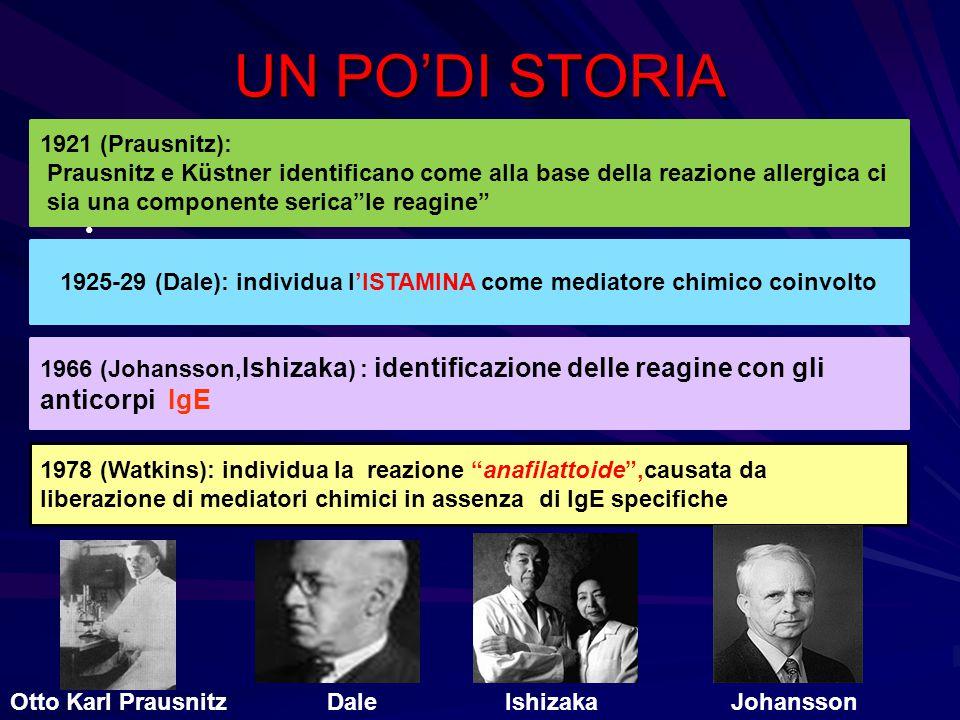 """UN PO'DI STORIA 1921 (Prausnitz): Prausnitz e Küstner identificano come alla base della reazione allergica ci sia una componente serica""""le reagine"""" 19"""