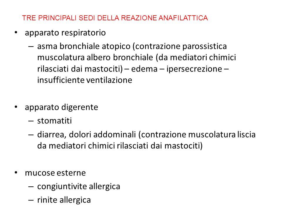 apparato respiratorio – asma bronchiale atopico (contrazione parossistica muscolatura albero bronchiale (da mediatori chimici rilasciati dai mastociti