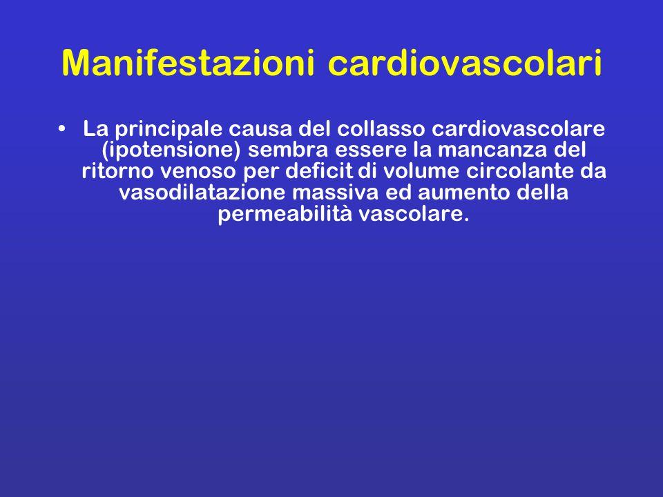 Manifestazioni cardiovascolari La principale causa del collasso cardiovascolare (ipotensione) sembra essere la mancanza del ritorno venoso per deficit