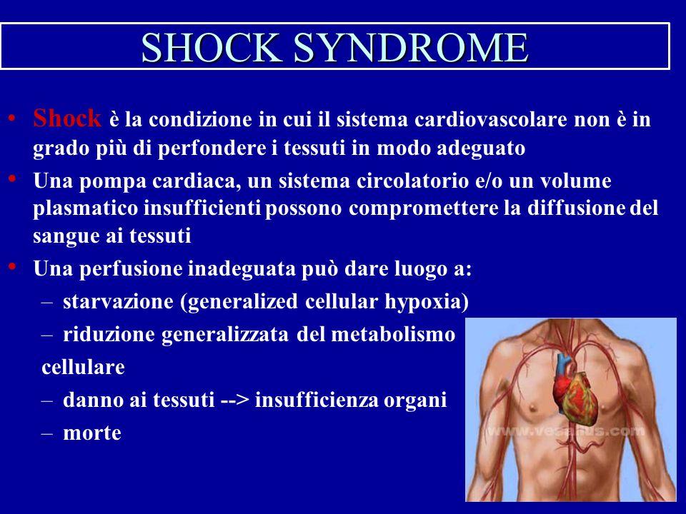 SHOCK SYNDROME Shock è la condizione in cui il sistema cardiovascolare non è in grado più di perfondere i tessuti in modo adeguato Una pompa cardiaca,