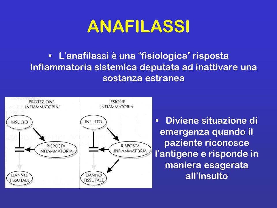 I linfociti Th2 innescano nei linfociti B l abnorme reazione di sintesi di IgE attraverso la sintesi e il rilascio di citochine quali IL-4, IL- 5, IL-9, IL-13 e IL-25 Le citochine come IL-5 (eosinofilopoietina) inducono la proliferazione e differenziazione degli eosinofili e dei mastociti che, insieme ai linfociti Th2 e i B linfociti, sono le cellule protagoniste della manifestazione allergica