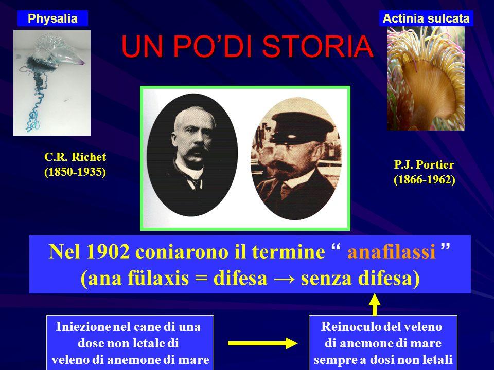 """UN PO'DI STORIA C.R. Richet (1850-1935) P.J. Portier (1866-1962) Nel 1902 coniarono il termine """" anafilassi """" (ana fülaxis = difesa → senza difesa) In"""