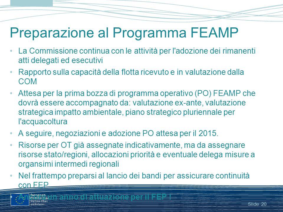 Slide Preparazione al Programma FEAMP La Commissione continua con le attività per l'adozione dei rimanenti atti delegati ed esecutivi Rapporto sulla c