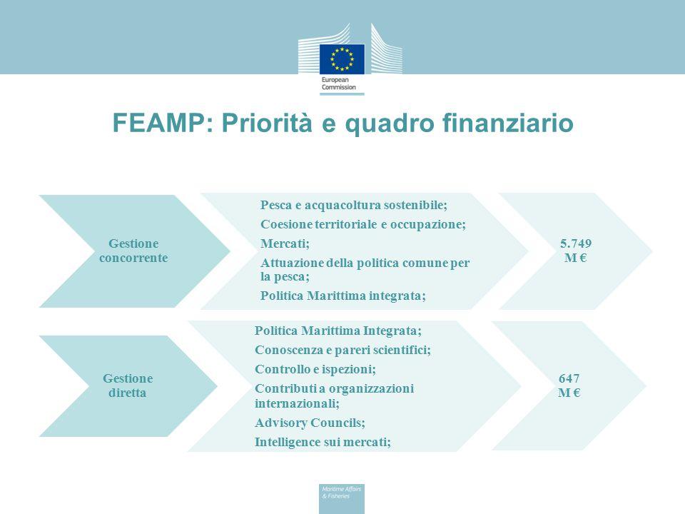 Allocazioni finanziarie FEAMP per l Italia in gestione concorrente Pesca e acquacultura:424.300.000 € Controllo attività pesca:55.443.892 € Raccolta dati:46.985.079 € Misure di mercato:6.088.028 € Politica Marittima:4.445.560 € TOTALE:537.262.559 €