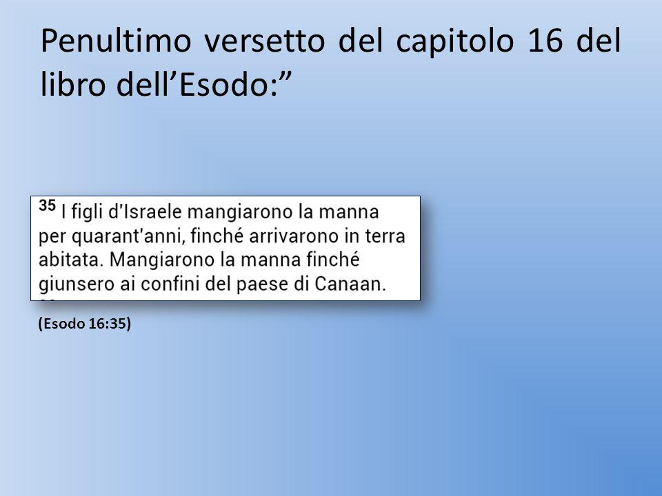 "Penultimo versetto del capitolo 16 del libro dell'Esodo:"" (Esodo 16:35)"
