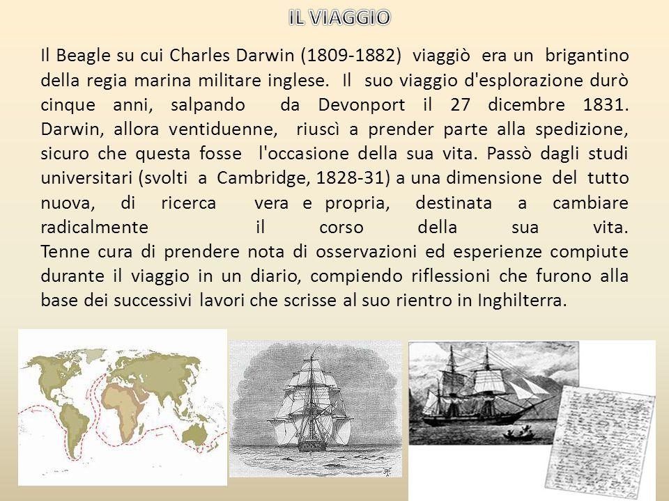 Charles Robert Darwin: nato il 12 febbraio 1809 – Acquario – è stato un biologo, geologo, zoologo e botanico britannico passato alla storia per aver f