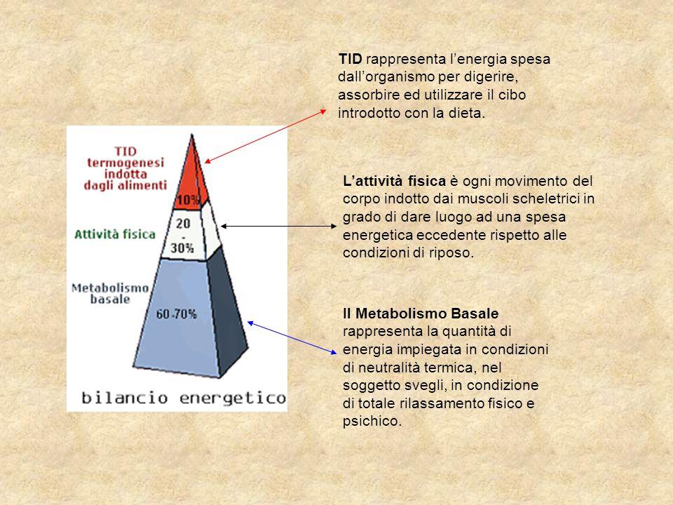 TID rappresenta l'energia spesa dall'organismo per digerire, assorbire ed utilizzare il cibo introdotto con la dieta. L'attività fisica è ogni movimen
